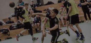 Viborg Forenede Håndboldklubber